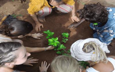 Du 8 au 22 avril 2019 : chantier international au centre d'accueil Croix-Rouge à Yvoir